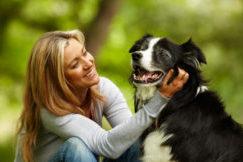 Помогите вашей собаке быть здоровой